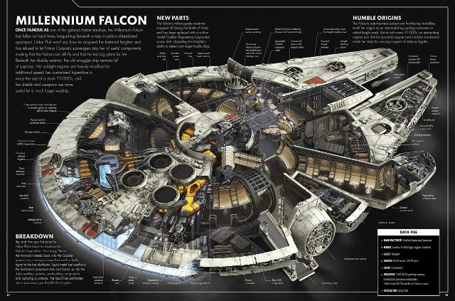 falcon-cross-section-sm